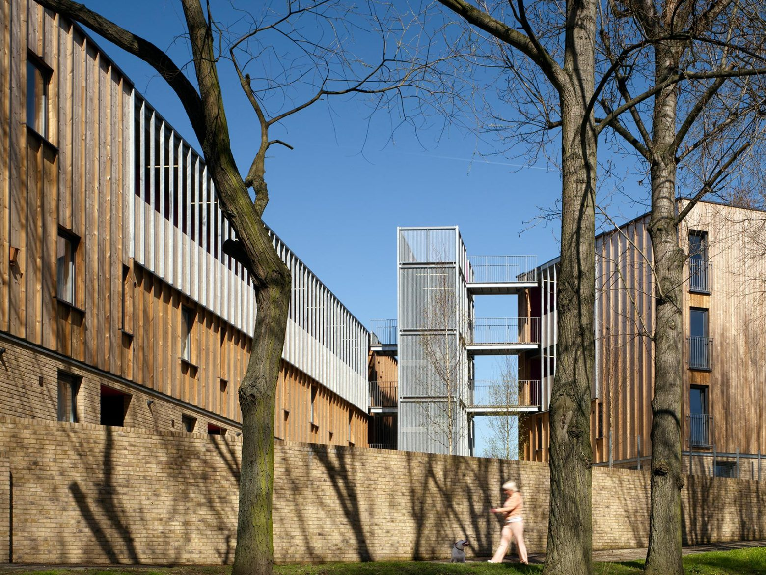 Heron Court features in Peter Wilson's new book The Modern Timber House
